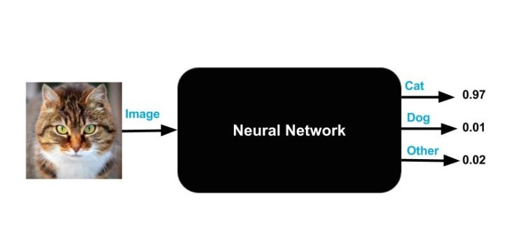 neural-network-as-blackbox